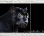 Black Panther3m. Размер 80х135 см. цена 30у.е.
