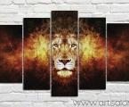 Lion 5m. Размер 97х165 см. цена 50 у.е. (размеры можно заказать меньше)