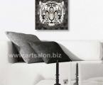 Panel tiger, size 60x60 cm. Цена 15 у.е. (фон можно украсить стразами в виде орнамента)