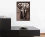 The Elephant panel, size 56x80 cm. Цена 20 у.е (картина украшена стразами)