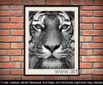 Tiger frame black