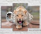 leopard 130. Размер 97х130 см. цена 40 у.е. центральная часть 51х97 см.