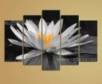 Lotus BW. Цена зависит от размеров