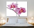 Orchid, 2 panels, size 120x87 cm