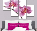 Orchid, the size of 100x130 cm