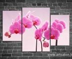 Pink orchid. Размер 80х120 см. цена 35 у.е.