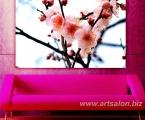 Sakura, the size of 60x100 cm