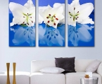 Triptych white flowers
