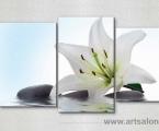 White lily and stones. Размер 80х125 см. цена 30 у.е.