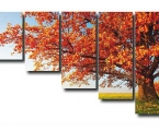 Tree_5m