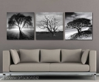 Triptych black and white trees. Размер каждой части 60х60 см. цена за 3 шт. 30 у.е.