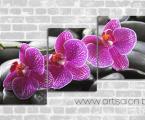 3 orchid. Размер каждой части 60х50 см. цена за комплект 30 у.е.
