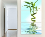 Bamboo, water, triptych, size 100x57 cm