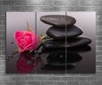 Zen Rose2