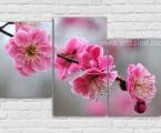 Modular panel Sakura, the size of 80x130 cm. Цена 30 у.е.