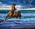 Horse 01 Размер 60х90 см. цена 20 у.е. размеры можно сделать меньше