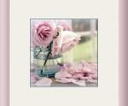 Delicate flower 05