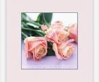 Delicate flower 06
