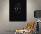 panther-size-60x90-cm