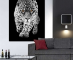 Black and white poster with color, size 60x100 cm