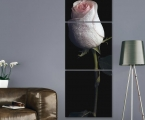 Panel art decor on the wall, rose 60x180 cm