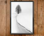 Winter black and white photo