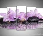 Modulnaya-fotokartina-orhidei-i-kamni-80x160-sm