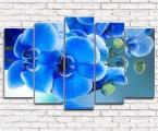 Modulnaya-kartina-golubie-orhidei-80x130-sm