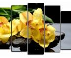 Modulnaya-kartina-jeltaya-orhideya 100x170 cm 40 у.е.