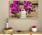 Orchid and stones-1