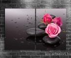 Zen Rose 1