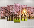Модульная картина цветущая сакура