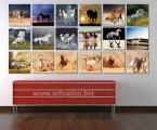 Collage horse2. Цена квадратных модулей зависит от размеров