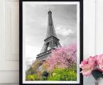 Эйфелева-Башня-черно-белое-и-цветное-размер-60х90-см_Eiffel-Tower-black-and-white-color-size-60x90-cm