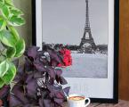 Poster Paris 60x40 sm 15 у.е.