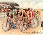 Retro pictures of bicycle racers